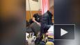 """Блогеров-""""шашлычников"""" с Сенной площади доставили ..."""