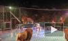 Видео с атакой львов в казанском цирке оказалось фейком