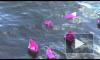 Новая традиция от Семёна Альтова. Кораблики надежды пустили по волнам Невы