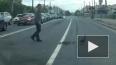 Видео: Утка-нарушительница с утятами переходила дорогу ...