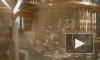 Росатом разрабатывает квантовый компьютер за 24 млрд рублей
