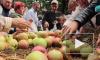 Яблочный спас в 2014 году отпразднуют погоней за мухами, поеданием освященных фруктов, гаданиями на любовь