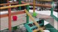 Опубликовано видео с места гибели 4-летнего ребенка, ...