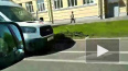 На Левашовском проспекте сбили девушку-курьера на ...