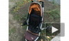 Во Владивостоке мужчина сбил двух женщин и двух малышей в колясках