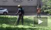 Видео: в Выборге косят траву и ухаживают за газонами