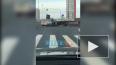 Что произошло в Санкт-Петербурге 1 ноября: фото и видео
