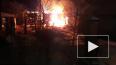 Все происшествия Петербурга за 31 января: фото и видео