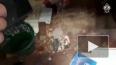 Видео: В Казани в офисе предпринимателя прогремел взрыв
