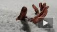 В Петербурге обнаружено вмерзшее в лед обнаженное тело