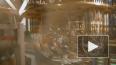 Росатом разрабатывает квантовый компьютер за 24 млрд ...