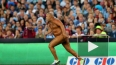 Голый толстяк сорвал в матч по регби в Австралии