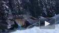 Видео из Канады: Три человека погибли при обрушении ...