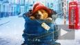 Хит-кино: Джим Керри 20 лет спустя, Игрок и мишка