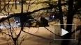 На Черной речке такси вылетело на тротуар