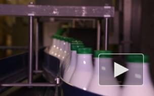 За первый квартал Роспотребнадзор снял с производства 19 тонн молока
