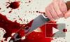 В Петербурге судят бизнес-леди, которая жестоко убила любовницу своего мужа