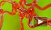 Робот-змея поможет справиться с последствиями инсульта