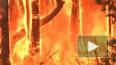Экипаж МКС ужаснулся пожарам в Австралии