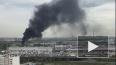 Видео: в Шушарах загорелись мусор и покрышки