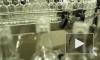 Петербуржец до смерти напился подозрительным спиртосодержащим напитком