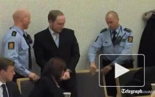 Норвежский радикал Брейвик, убивший 77 человек, попросил об УДО