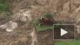 Видео после страшного землетрясения: коровы выжили, ...
