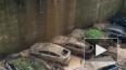 Видео из Владивостока: Сель обрушился на автопарковку