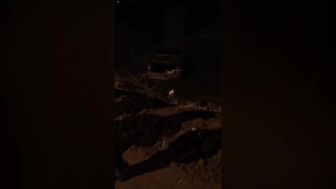 Что произошло в Санкт-Петербурге 12 ноября: фото и видео