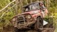 Трофи-рейд Ладога: гонки по бездорожью