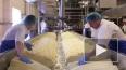 У контрабандистов изъяли 117 кг сыра и масла на границе ...