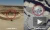 Минобороны опубликовало видео разрушения боевиками памятников Пальмиры
