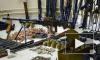 В Псковской области ликвидирована интернациональная ОПГ, занимавшаяся контрабандой оружия из Латвии