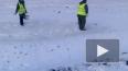 Видео очевидца: в Чувашии засеяли травой сугробы