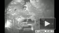 Камеры видеонаблюдения зафиксировали поджигателя машин в...
