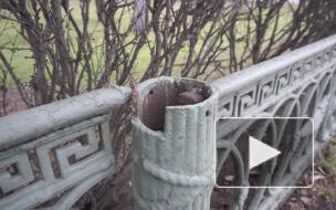 С исторической ограды Александровского парка исчезли боевые топоры