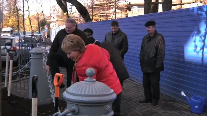 Новый дуб лучше старых двух. Валентина Матвиенко ответила вандалам созиданием.