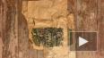"""Жители дома Бака показали клад, найденный в """"тайной ..."""