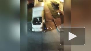 Полиция поймала поджигателя грузовиков в Красносельском районе