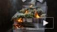 В Петербурге сожгли 68 тысяч опасных цветов из Европы