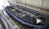 На Средне-Невском судостроительном заводе заложили рейдовый тральщик для ВМС Казахстана