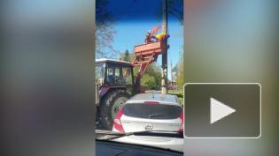 Очевидцы: В Сестрорецке рабочие нарушают технику безопасности, снимая праздничную символику