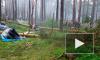 Ураган в Новосибирской области унес жизни сестер-двойняшек: на палатку упало дерево