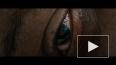 """В сети появился новый трейлер фильма """"Стекло"""" с Брюсом ..."""