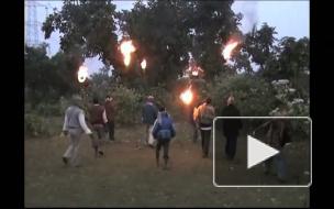 Слоны топчут индийские деревни