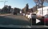 Появилось видео с хитрой собачкой, которая устроила ДТП в Ростове