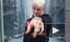 Смерть рэпера Lil Peep: американские и русские рэперы выражают соболезнования