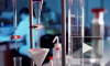 В США прошли успешные испытания вакцины от лихорадки Эбола на 20 добровольцах, ученые подошли к разгадке тайны болезни