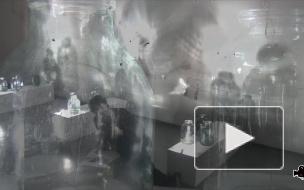 На дне мерцающей банки: арт-репортаж с выставки Сергея Деникина