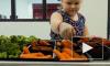 Правительство России поддержало законопроект об обеспечении горячим питанием учеников начальных классов